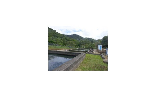 Southern Grenada Water Supply and Improvement Project : bassins de traitement